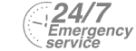 24/7 Emergency Service Pest Control in Canbury, Coombe, KT2. Call Now! 020 8166 9746