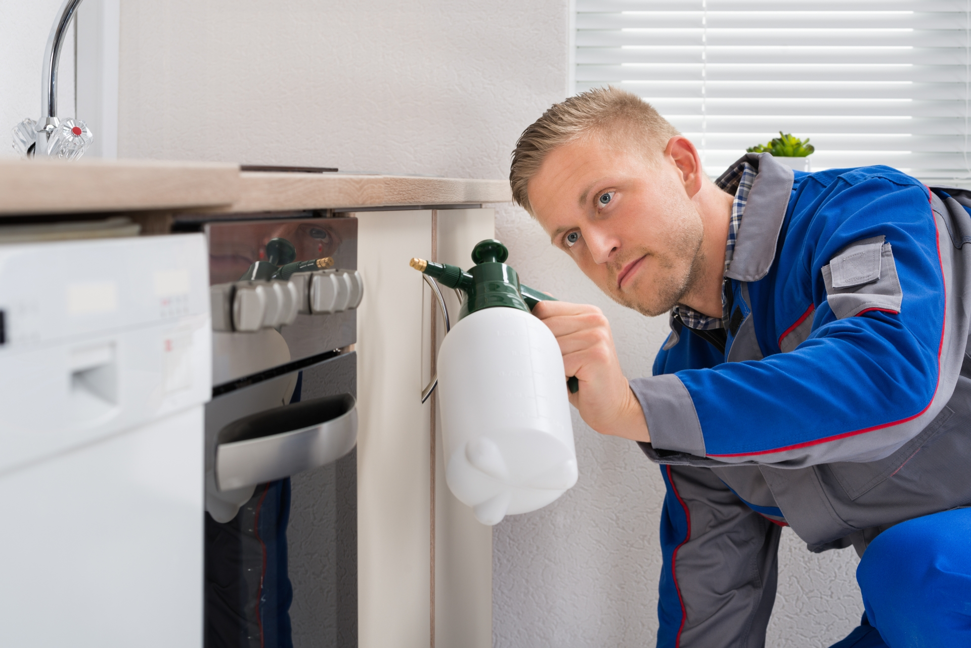Pest Inspection, Pest Control in Canbury, Coombe, KT2. Call Now 020 8166 9746